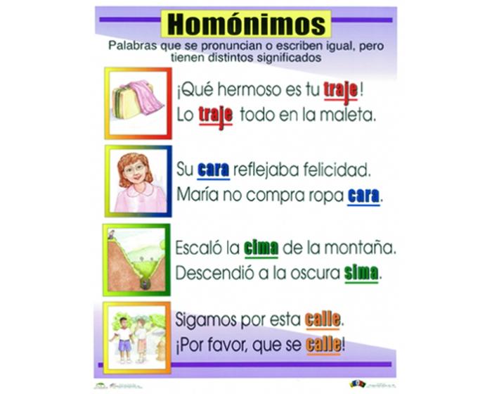 Ejemplos de homónimos